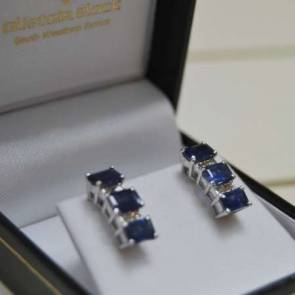 14ct White Gold Diamond & Sapphire Earrings